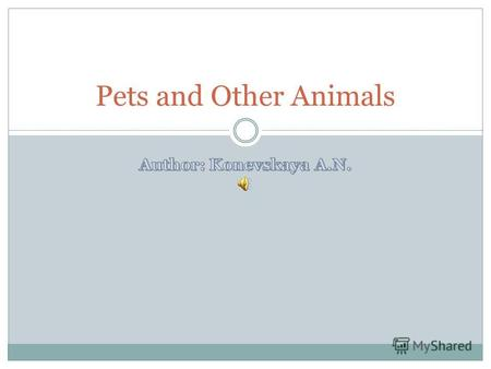 Pets and Other Animals. There are different animals.