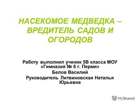 знакомство с мужчиной в перми без регистрации
