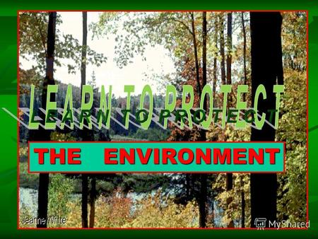 1 THE ENVIRONMENT. 2 G L O B A L P R O B L E M S AIR POLLUTION WATER POLLUTION TRASH AND LITTER RECYCLING.