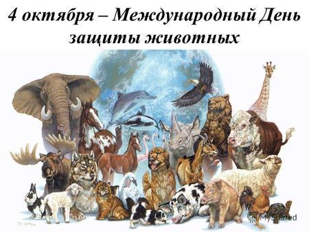Картинки по запросу картинка Всемирный день защиты животных