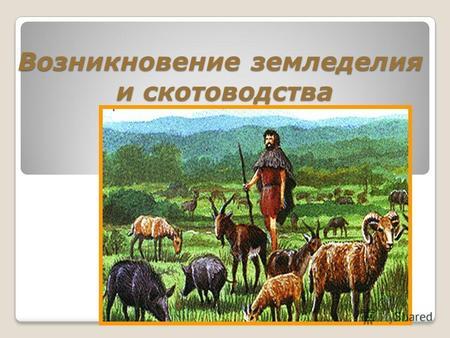 Первые земледельцы и скотоводы доклад 2485