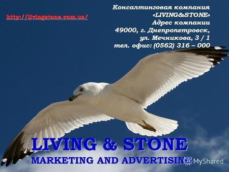 LIVING & STONE MARKETING AND ADVERTISING Консалтинговая компания «LIVING&STONE» Адрес компании 49000, г. Днепропетровск, ул. Мечникова, 3 / 1 тел. офис: