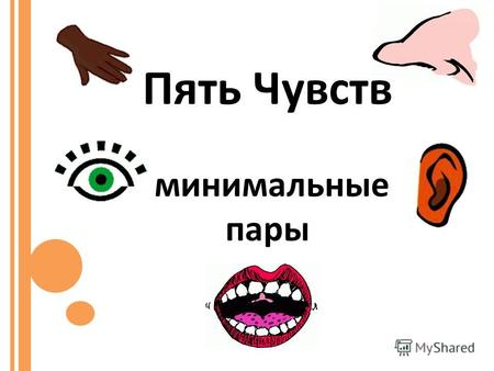Пять Чувств минимальные пары. Good Bad Loud Quiet Hot Cold Beautiful Ugly Pleasant Unpleasant Big Small Old Young, New.