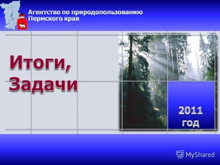Презентация на тему ОПЫТ ГОСУДАРСТВЕННОГО УЧЕТА И КОНТРОЛЯ ЗА  1 Лесной контроль и надзор Пожарный надзор Лесной контроль и надзор Пожарный надзор Управление