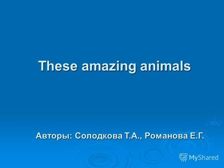 These amazing animals Авторы: Солодкова Т.А., Романова Е.Г.