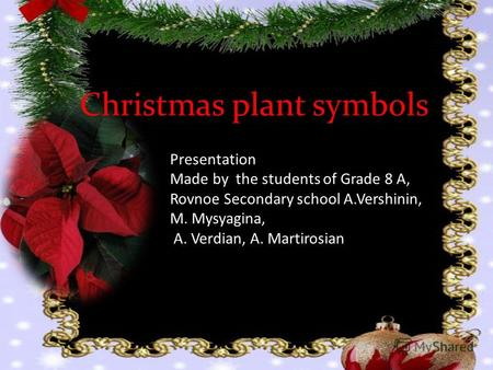 Christmas plant symbols Presentation Made by the students of Grade 8 A, Rovnoe Secondary school A.Vershinin, M. Mysyagina, A. Verdian, A. Martirosian.
