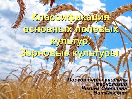 Презентация зерновые культуры