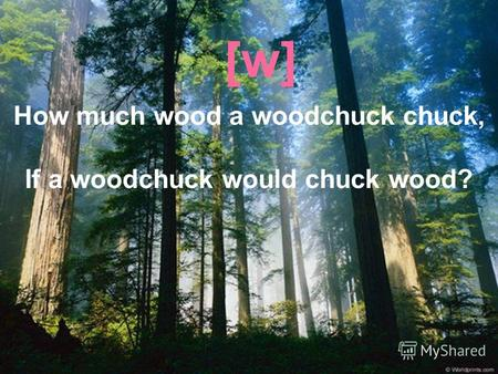 How much wood a woodchuck chuck, If a woodchuck would chuck wood? [w]