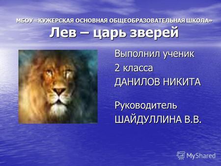 Доклад про царя зверей льва 7420