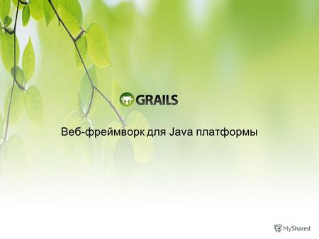 Веб-фреймворк для Java платформы. Что такое Grails? Веб-фреймворк для Java платформы на языке Groovy Инспирирован RoR Open source. Активно поддерживается.