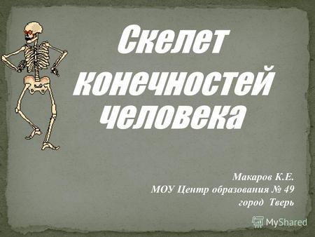 Презентации на тему конечности скелета