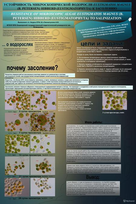 RESISTANCE OF MIKROSCOPIC ALGAE EUSTIGMATOS MAGNUS (B. PETERSEN) HIBBERD (EUSTIGMATOPHYTA) TO SALINIZATION Научный руководитель: Сафиуллина Л.М., к.б.н.,