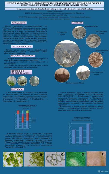 Soil algae and cyanobacteria from the Uchaly mining and concentration plant dumps of different age. ПОЧВЕННЫЕ ВОДОРОСЛИ И ЦИАНОБАКТЕРИИ РАЗНОВОЗРАСТНЫХ.