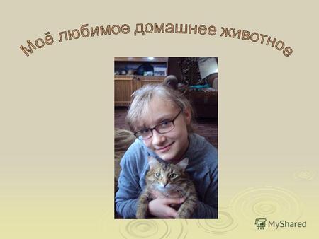 Скачать презентацию на тему домашнее животное про кошку