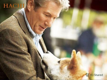 Hachi: A Dog's Tale is a 2009 drama film based on the true story of a faithful Akita, the titular Hachikō. It was directed by Lasse Hallström, written.
