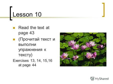Lesson 10 Read the text at page 43 (Прочитай текст и выполни упражнения к тексту) Exercises 13, 14, 15,16 at page 44.