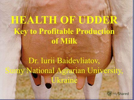 HEALTH OF UDDER Key to Profitable Production of Milk Dr. Iurii Baidevliatov, Sumy National Agrarian University, Ukraine.