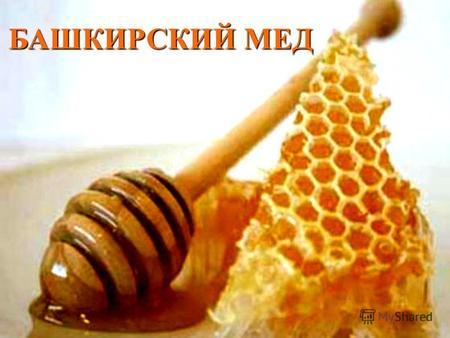 Реферат про башкирский мед 7825