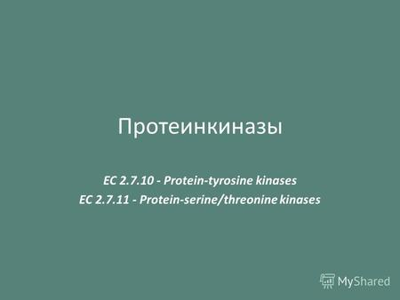 Протеинкиназы EC 2.7.10 - Protein-tyrosine kinases EC 2.7.11 - Protein-serine/threonine kinases.