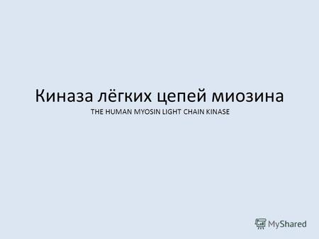 Киназа лёгких цепей миозина THE HUMAN MYOSIN LIGHT CHAIN KINASE.