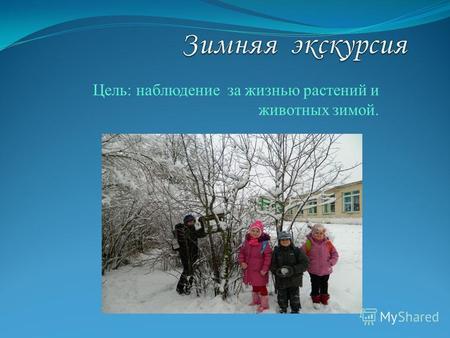 Экскурсии и наблюдения