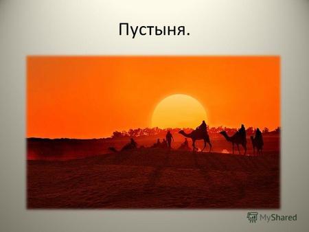 Презентация на тему Пустыня Окружающий мир класс работа  Что ты обычно представляешь себе когда слышишь слово пустыня