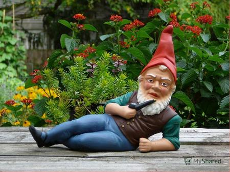 Hello, boys and girls! My name is Gnome. I am very old. I am from Great Britain. I live in the forest. I have no mother, no father, no brother and sister.