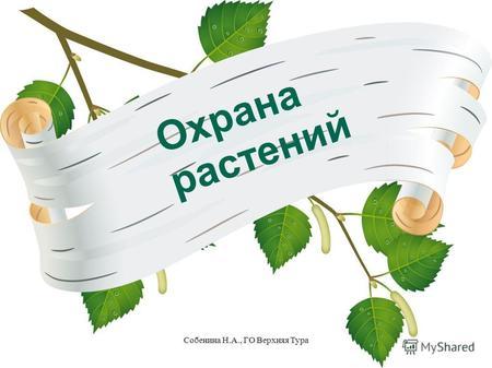 Реферат охрана растений и животных 2937
