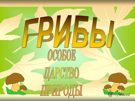 Презентацию на тему гриб лисичка