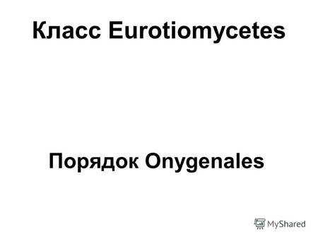 Класс Eurotiomycetes Порядок Onygenales. Arthroderma sp. (телеоморфа) Microsporum sp. (анаморфа)