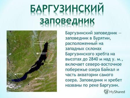 Картинки по запросу баргузинский заповедник