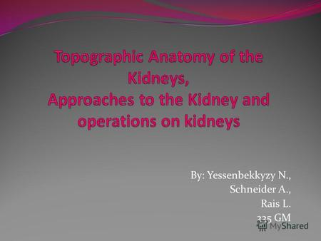 Topographic Anatomy of the Kidneys, Approaches to the Kidney and operations on kidneys