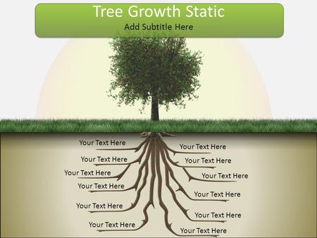 Your Text Here Add Subtitle Here Tree Growth Static.