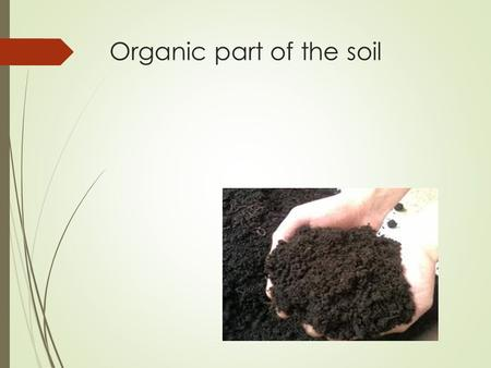Organic part of the soil. Contens: Organic matter of the soil. Modern concepts of humus formation. Composition and properties of humus. The importance.