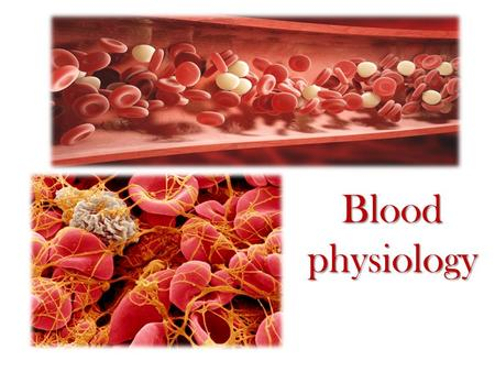 Blood physiology. Blood constituents and their functions.