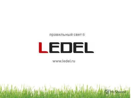 Светодиодные видеоэкраны в СПб