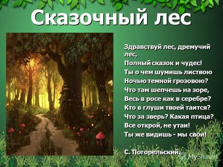 Здравствуй речка здравствуй лес мы попали в лес чедес