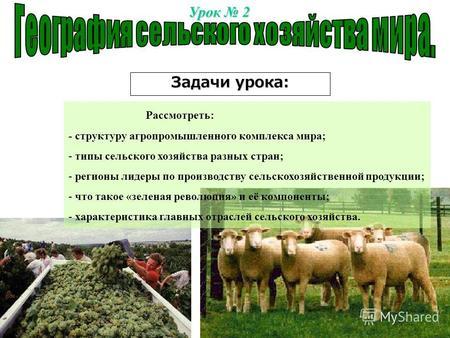 Сельское хозяйство мира тест 10 класс ответы