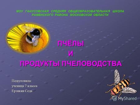Реферат на тему пчеловодство 9298