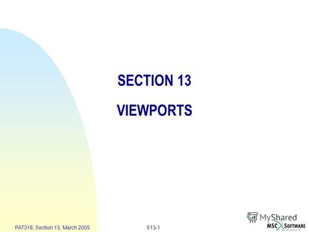 S13-1 PAT318, Section 13, March 2005 SECTION 13 VIEWPORTS.
