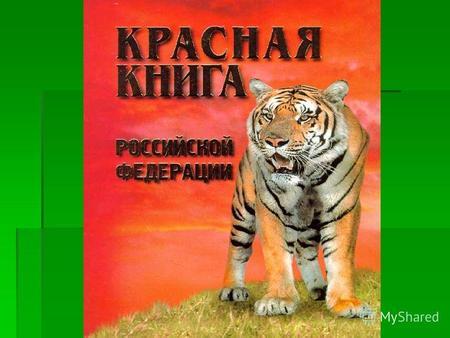 Презентация 3 класса на тему животные красноватой книжки