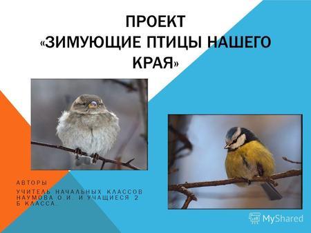 Презентация на тему зимующие птицы нашего края
